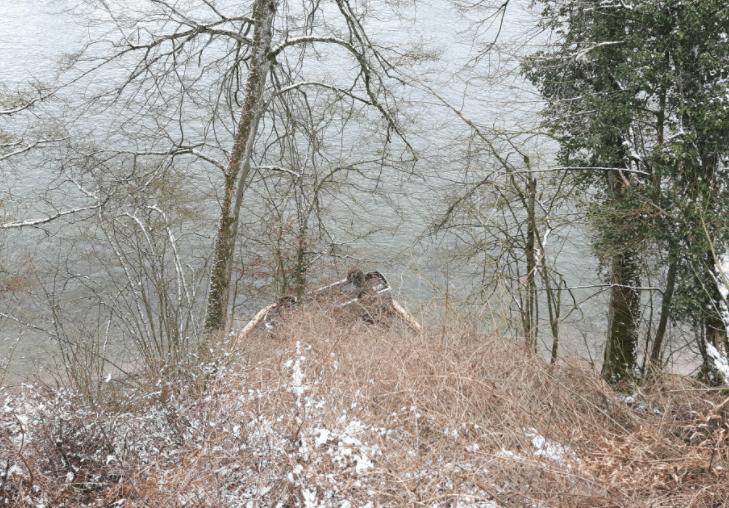 Rekingen AG – Auto rollt in den Rhein