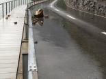 Stansstad NW - Lopperstrasse wegen Steinschlag gesperrt