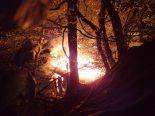 Laufen BL - Holzhütte bei Brand vollends zerstört