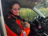 A13 Sevelen SG - Verletzten Mäusebussard gerettet