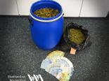 Winterthur ZH - Professionelle Indoor-Hanfplantage entdeckt