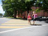 Wallis VS - Sicherheit auf Schulweg: 393 Ordnungsbussen und 28 Strafanzeigen