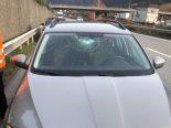 Domat/Ems GR - Windschutzscheibe auf Autobahn von Ast getroffen
