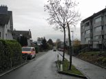 Lachen SZ - Nach Kollision mit Baum: Fahrzeuglenker ermittelt