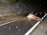 Brunnen SZ - Axenstrasse wegen Baumstrunk gesperrt