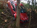 Heiden AR - Auto nach Unfall durch Bäume abgebremst