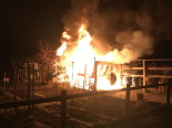 Muttenz BL - Gartenhaus in Brand geraten