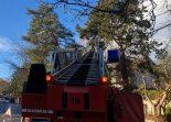 Bern BE - Drei Feuerwehreinsätze wegen Sturmtief Veiko