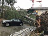 Luzern - Sturm sorgt für Schäden und Strassensperrungen