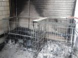 Islikon TG - Paletten mit Entsorgungsmaterialien in Brand geraten
