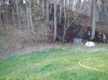 Brand in Weinfelden TG - 1'500 Quadratmeter Waldboden beschädigt