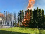 Amriswil TG - Hecke in Brand geraten