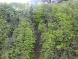 Am Donnerstagabend, 23.04.2020, wurden oberhalb von Diesbach zwei Berggängerinnen tot geborgen. Nach ersten Erkenntnissen begaben sich die beiden 75-jährigen Frauen vom Bahnhof Rüti GL aus auf eine Wanderung in Richtung Braunwald. Aus noch ungeklärten Gründen stürzten sie rund 190 Meter in die Tiefe. Dabei erlitten sie tödliche Verletzungen. Die beiden Rentnerinnen wurden am Montag, 20.04.2020, als vermisst gemeldet. Im Rahmen der Suchaktion wurden die Vermissten bei einem Helikopter-Suchflug in einer Runse auf rund 740 m.ü.M. gefunden. Die Umstände des Unfalls werden durch die Staatsanwaltschaft des Kantons Glarus in Zusammenarbeit mit der Kantonspolizei Glarus untersuch