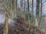 Tecknau BL - Waldbodenbrand durch offenes Feuer