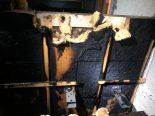 Brandfall in SH