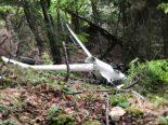 Bettlach SO - Pilot bei Flugunfall erheblich verletzt