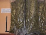 Schleitheim SH - 8 Kilogramm Marihuana in Kofferraum entdeckt