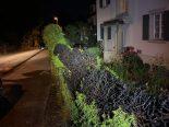 Schaffhausen - Heckenbrand verursacht Sachschaden von mehreren tausend Franken