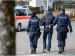 Dielsdorf ZH - Jugendliche Diebe festgenommen