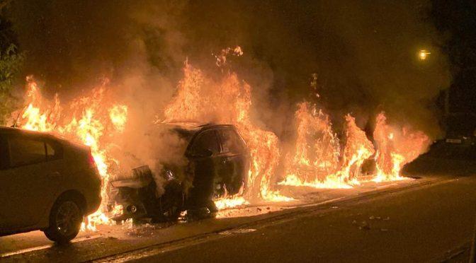 Stadt Luzern - Drei Autos komplett ausgebrannt