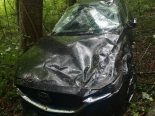 Winterthur ZH - Nach Unfall Auto in Wald entsorgt