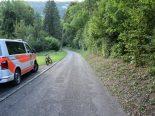 Unfall Bärschwil SO - Hund tödlich verletzt - Lenkerin gesucht
