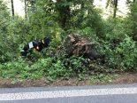 Rothenburg LU - Lenkerin bei Unfall durch die Luft geschleudert