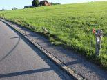 Steinegg AI - Bei Selbstunfall mehrere Betonpfähle beschädigt