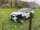 Unfall A22 Itingen BL - Nach Überholmanöver Wildschutzzaun durchbrochen
