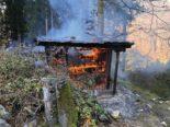 Diesbach - Brand im Wald