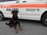 Wittenbach SG: Polizeihund Yodi spürt Flüchtigen auf