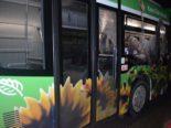 Grenchen SO - Drei Linienbusse beschädigt und Personen gefährdet