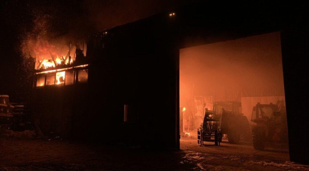 Brand Buch am Irchel ZH - 80 Kälber aus Feuer gerettet