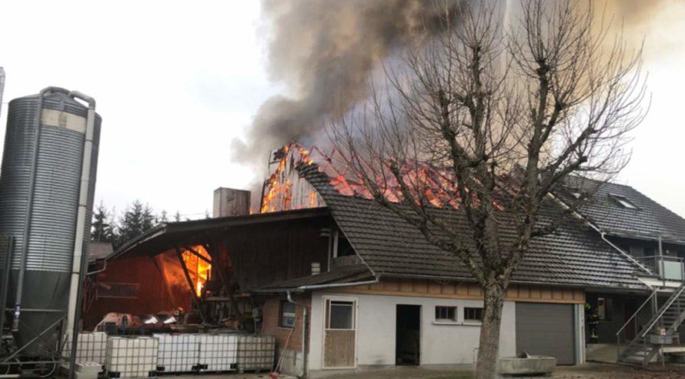 Mauensee LU: Scheune mit angebauten Wohnhaus in Brand geraten
