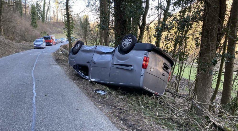 Unfall Rekingen AG - Baum trifft Auto bei Holzfällerarbeiten