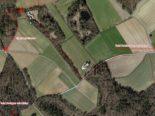 Beringen / Schaffhausen SH: Strassensperrungen für Amphibienwanderungen