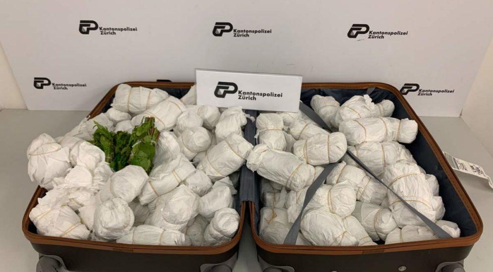 Zürich Flughafen: 40 kg Khat sichergestellt