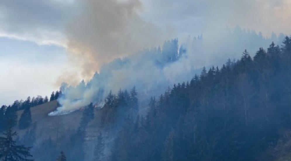 Crésuz FR - Waldbrand mit Hilfe zweier Helikopter gelöscht
