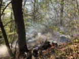 Arlesheim, Liesberg BL: Brandausbrüche im bewaldeten Gelände