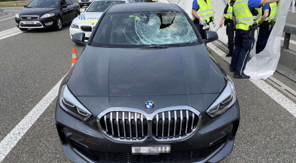 Unfall Mägenwil AG: Automobilistin nach Zusammenstoss mit Reh verstorben