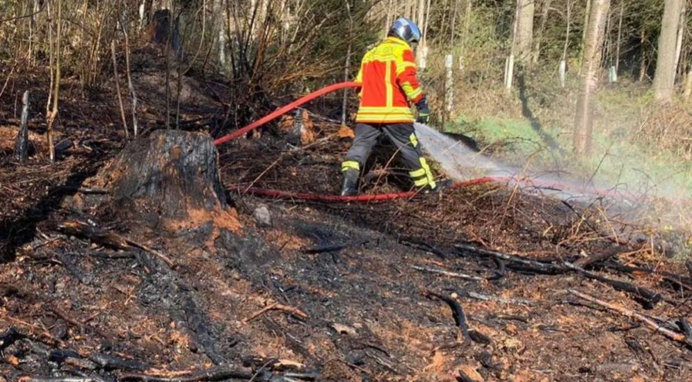 Bantigen BE: Vegetationsbrand im Chatzestyg-Wald