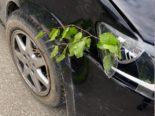 Brugg AG: Fahrer baut auf Irrfahrt mehrere Unfälle mit 1,6 Promille