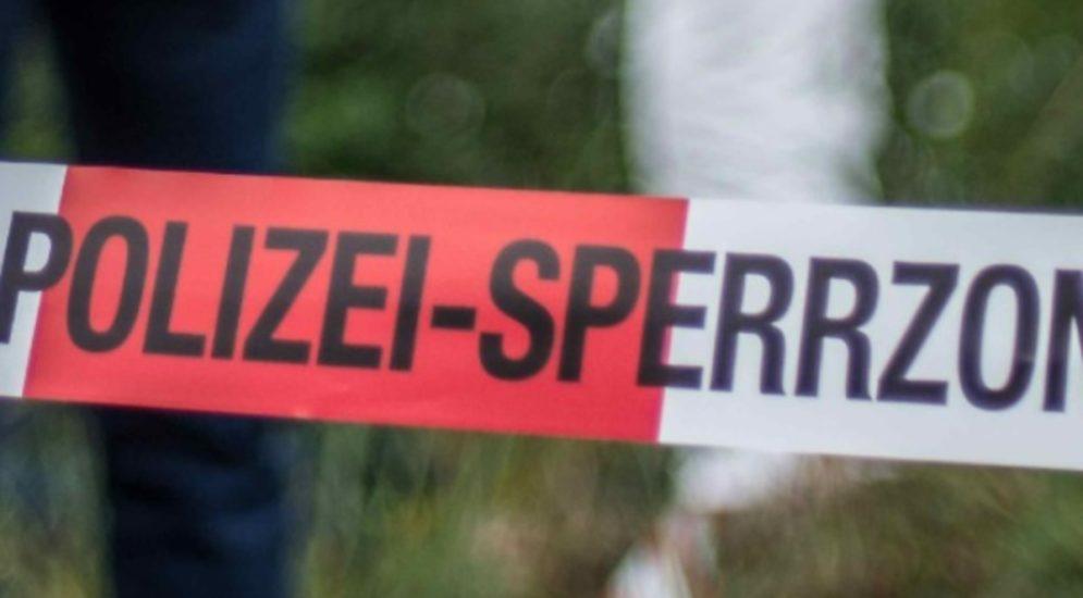 Tötungsdelikt Bezirk Bülach ZH: Knochenfund im Wald