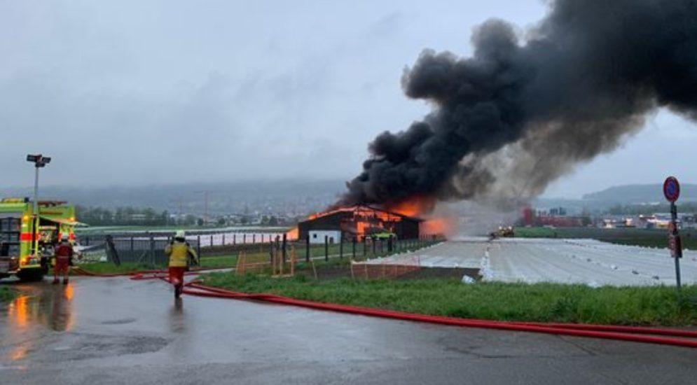 Brand in Dällikon: Explosionsgefahr bei Betriebsgebäude mit Düngerlager