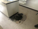 Schulhaus Rapperswil-Jona: Abfalleimer nach Experiment in Brand geraten