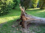 St. Aubin FR - Strassensperre wegen umgestürzter Bäume