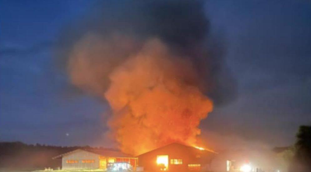 Herzogenbuchsee BE: Scheune in Brand geraten