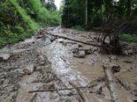 Gewitterfront im Kanton Zug: Massiver Murgang nach Starkregen