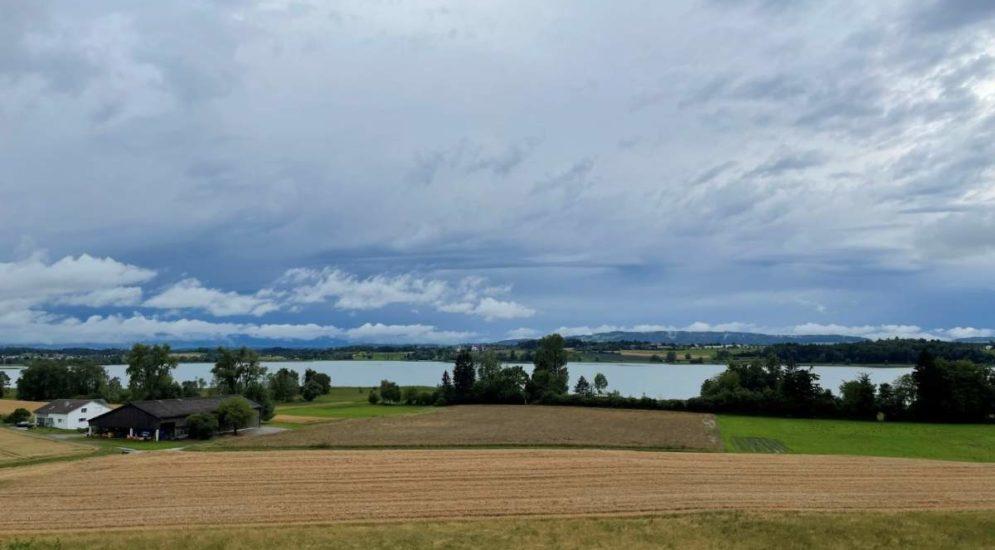 Greifensee ZH: Fischerei-, Umwelt- und Naturschutzkontrollen