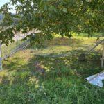 Leibstadt AG: Bei Unfall in Zaun von Hundeschule gefahren und geflüchtet